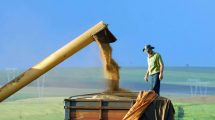 Brasil óleo de soja